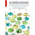 La común anomalía del ejido posrevolucionario. Disonancias normativas y mercantilización de la tierra en el sur de Yucatán